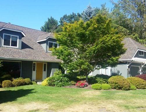 Residential Exterior – Bellevue 11