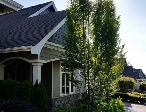 Residential Exterior – Issaquah 3